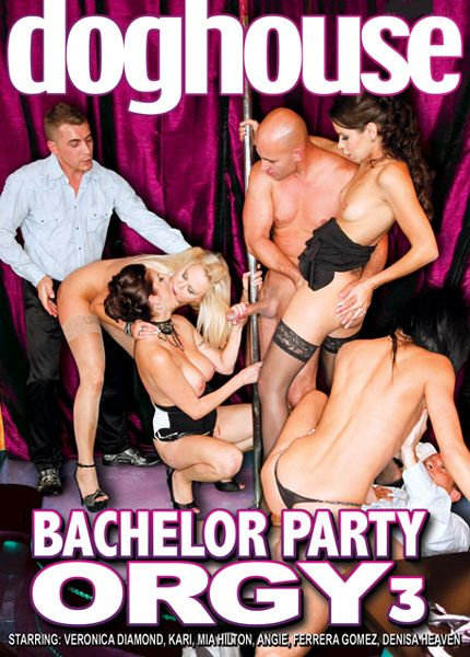 Bachelor Party Orgy 3 [2011] DVDRip