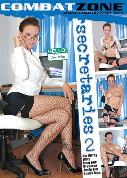 Secretaries 2 [2009] DVDRip