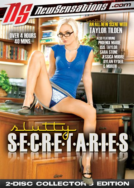 Slutty Secretaries [2010] DVDRip