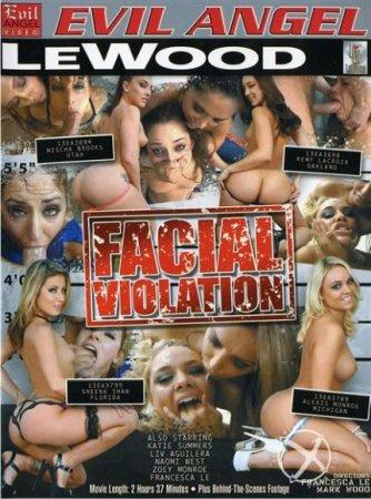 Facial Violation [2013] DVDRip