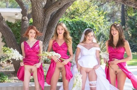 Bree Daniels, Jessi Andrews, Malena Morgan, Aurielee Summers - Wedding Day