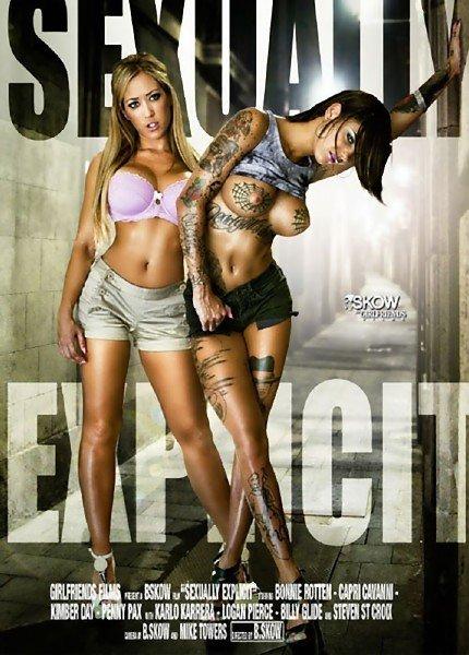 Sexually Explicit (2014/DVDRip)