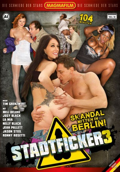 Stadtficker 3 (2013/DVDRip)