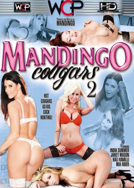 Mandingo Cougars 2 (2014/WEBRip/SD)