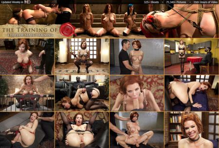 BDSM - The Training of Veronica Avluv