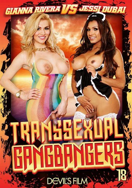 Transsexual Gang Bangers 18 [2014] WEBRip-FullHD
