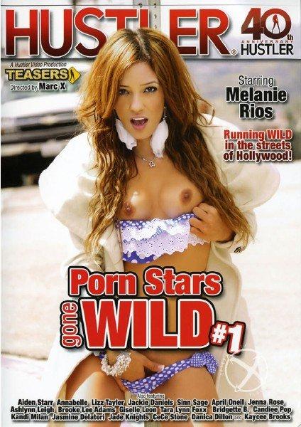 Porn Stars Gone Wild (2014/DVDRip)