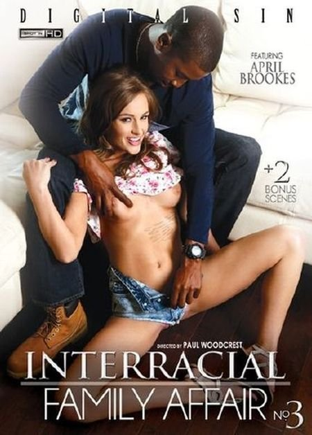 Interracial Family Affair 3 (2016)