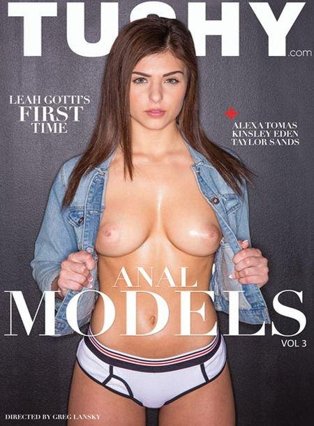 Anal Models 3 (2016)