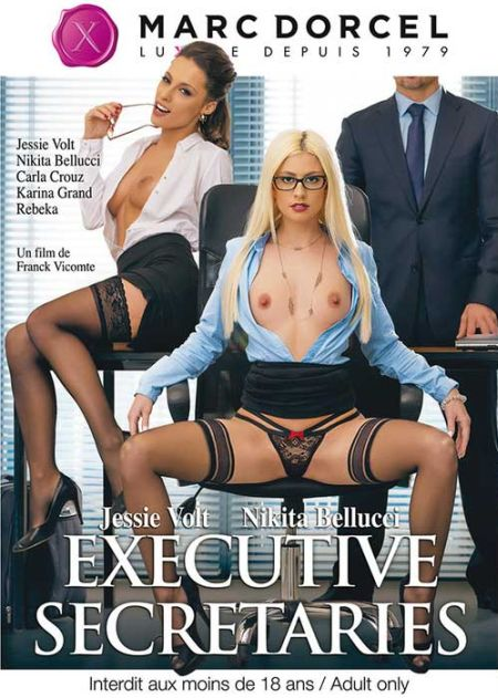 Les Secretaires Du Patron / Executive Secretaries / Секретари От Босса [2016]