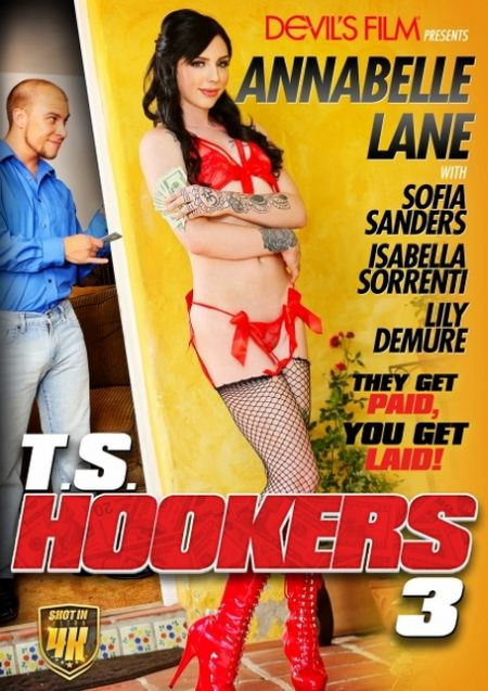 T.S. Hookers 3 / Трансы Шлюхи 3 [2017]