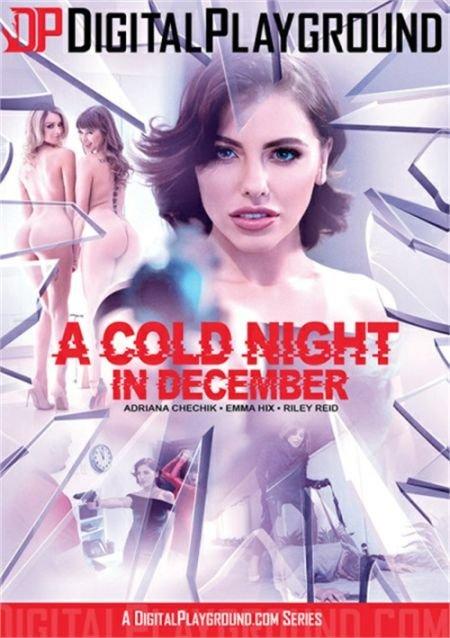 A Cold Night In December / Холодная Ночь В Декабре (2019)