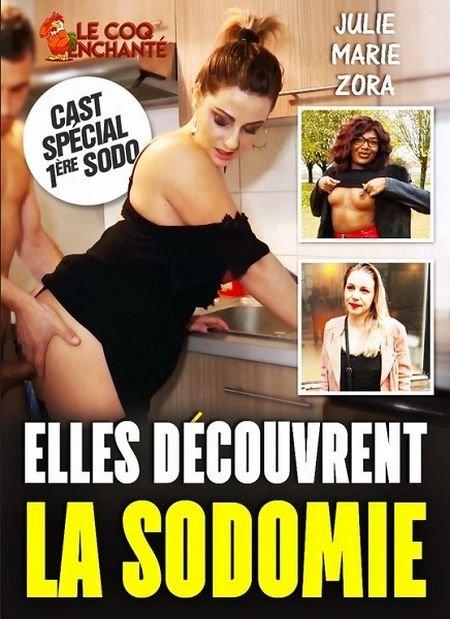 Elles dеcouvrent la sodomie / Они открывают для себя анал (2020)